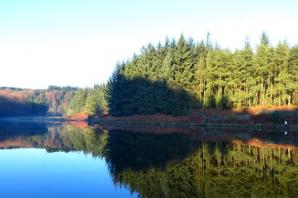 READER'S PIC: Peaceful Entwistle reservoir under clear blue skies